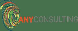 Any Consulting - Tecnologia que cria valor